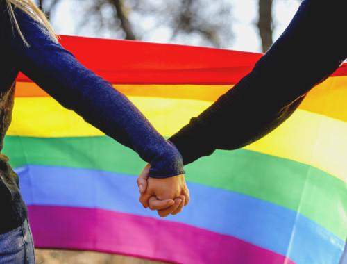 """שוויון זכויות כלפי חברי הקהילה הלהט""""בית בנושא נישואין גירושין ופונדקאות"""