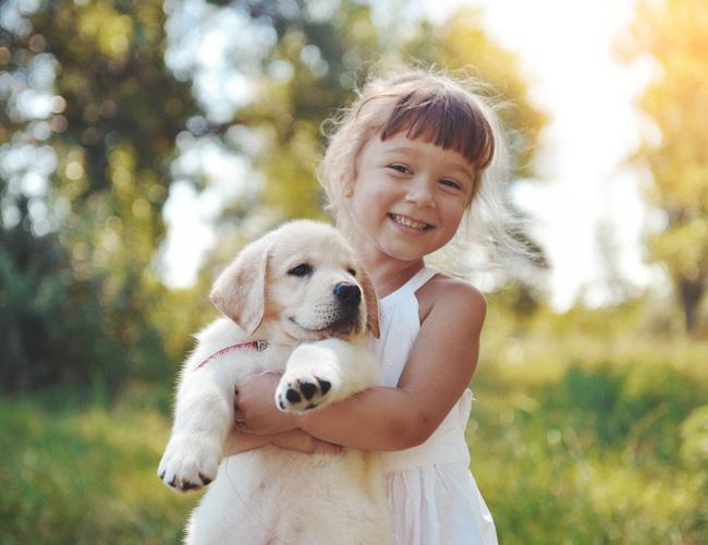 לעזור לנו לאמץ כלב